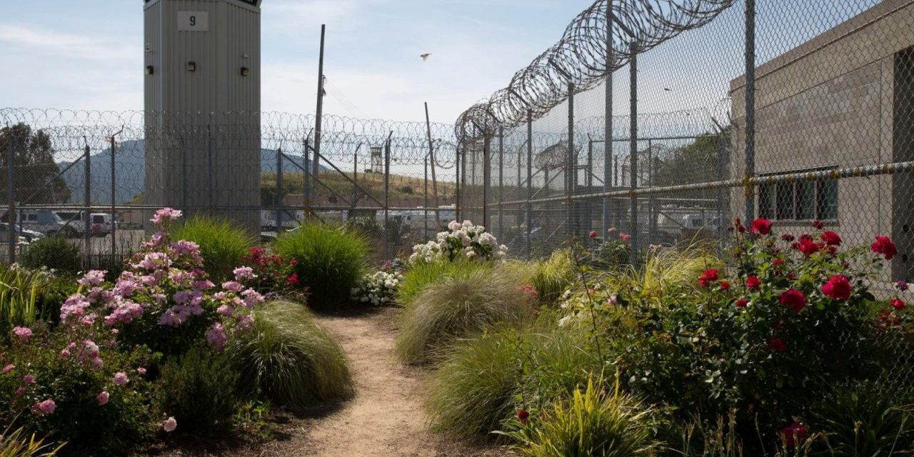 Prison Gardens: Inside-Out Crime Prevention