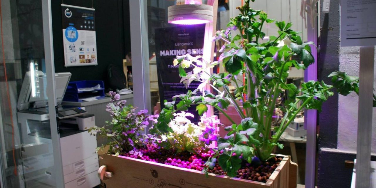 Print Your Own Compact Aquaponics System