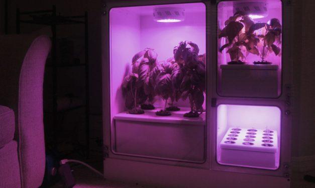 Meet Oasis Mini Smart Garden System