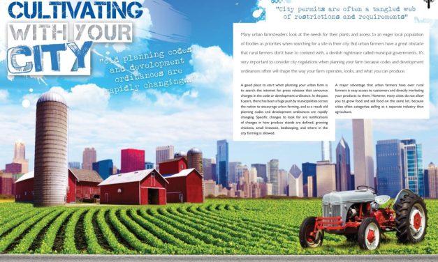 Urban Farm Planning Tips