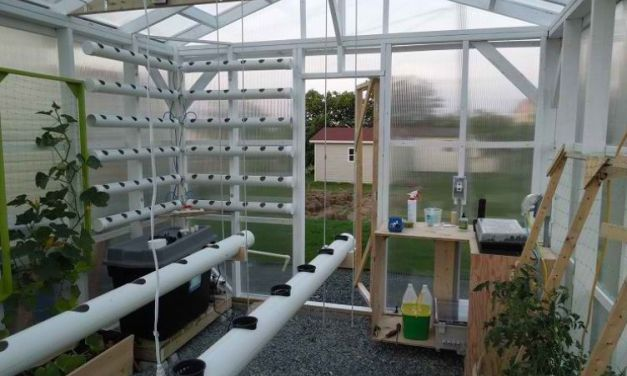 DIY Fully Automated Hydroponic Greenhouse