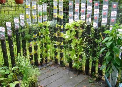 Vertical Drink Bottle Kitchen Garden
