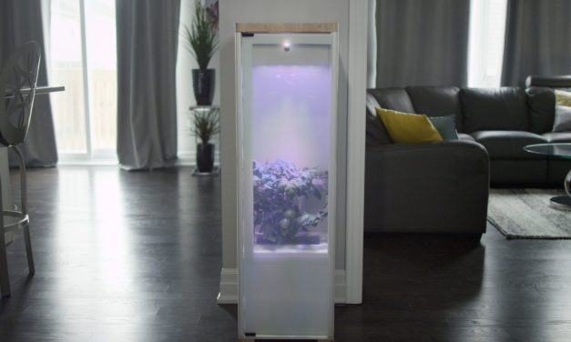 The Tall Plant Indoor Garden System