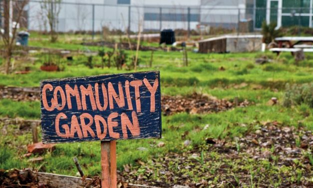 Will Technology Make Community Gardens Obsolete?