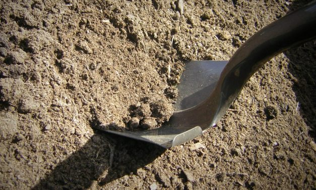 Make Your Own Organic Soil Mix