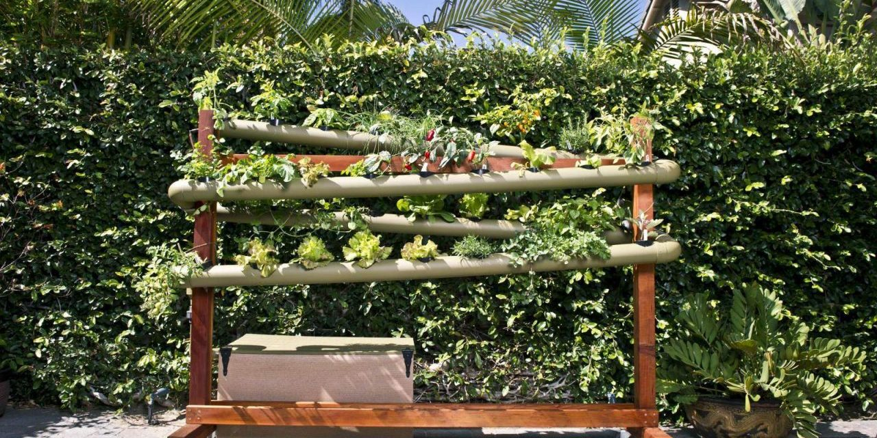 Vertical Gardening with Hydroponics in Soil