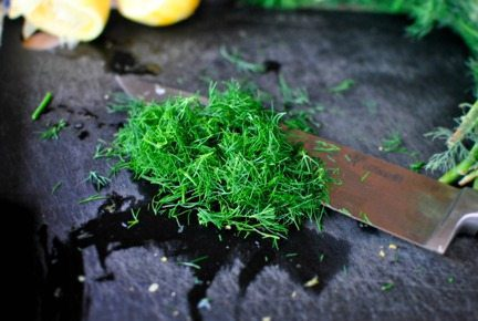 Many Delicious Reasons for Growing Dill