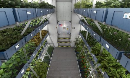 Hydroponics: Growing in Space