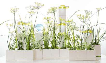 Meet LeGrow Smart Garden System