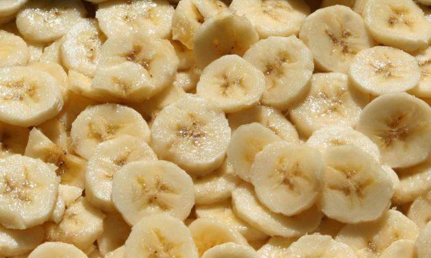 Propagating EDIBLE Bananas
