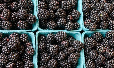 Big Jump in Organic Food Demand