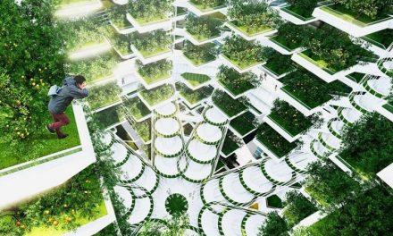 Seoul Food: Vertical Farming in South Korea