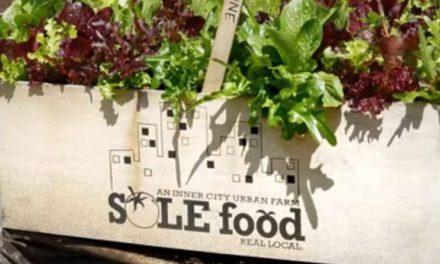 Help Sole Food Farms Grow