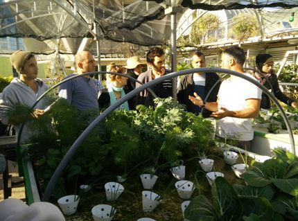 Mandy Falk at Green In The City in Tel Aviv explains hydroponics and urban gardening to a workshop group in Tel Aviv.