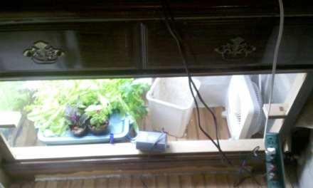 A Better Looking Indoor Garden