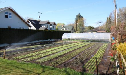 Urban Agriculture Act of 2016