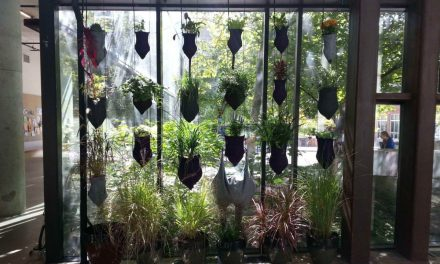 Vermiponic Gardens? Vertical Innovations