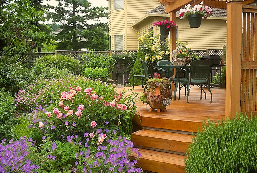 rose garden ideas how to design with