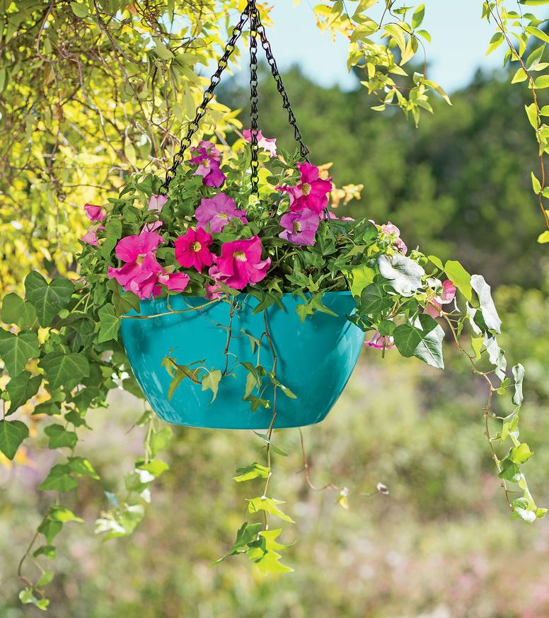 Plant Food Don T Forget To Feed Your Plants Gardener S Supply