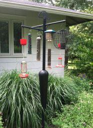 Squirrel Stopper Bird Pole Feeder