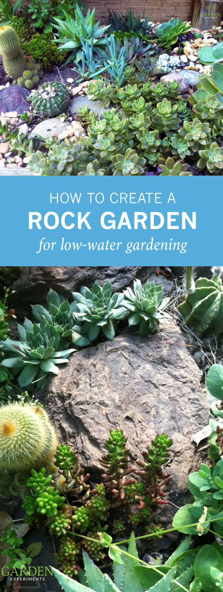 How To Create A Rock Garden For Low-Water Gardening