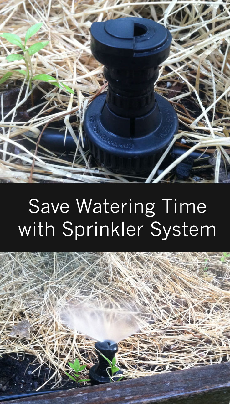 How to Save Time Watering Your Garden - As much as I love having a large vegetable garden, I do not enjoy watering. Standing there with a hose or even setting up a sprinkler that I have to move around is definitely not my favorite thing to do. This sprinkler system is easy to install and saves watering time.