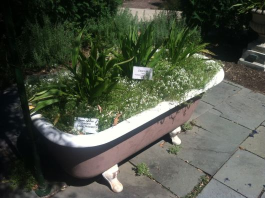 Unique Bathtub Container