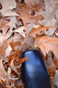 What should I do with all of the leaves in my yard?