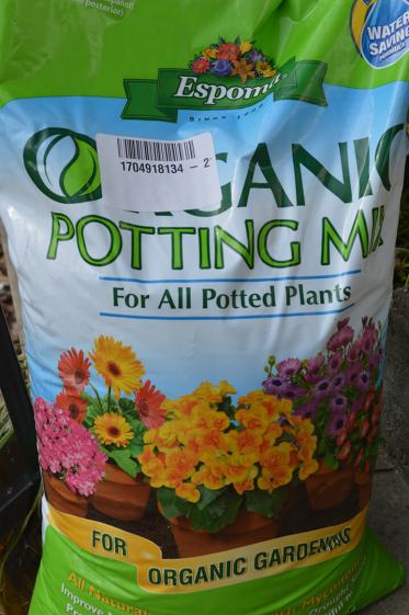 Use potting mix in the cups