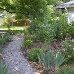 Front garden and walkway
