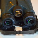 Choosing Binoculars for Backyard Bird Watching