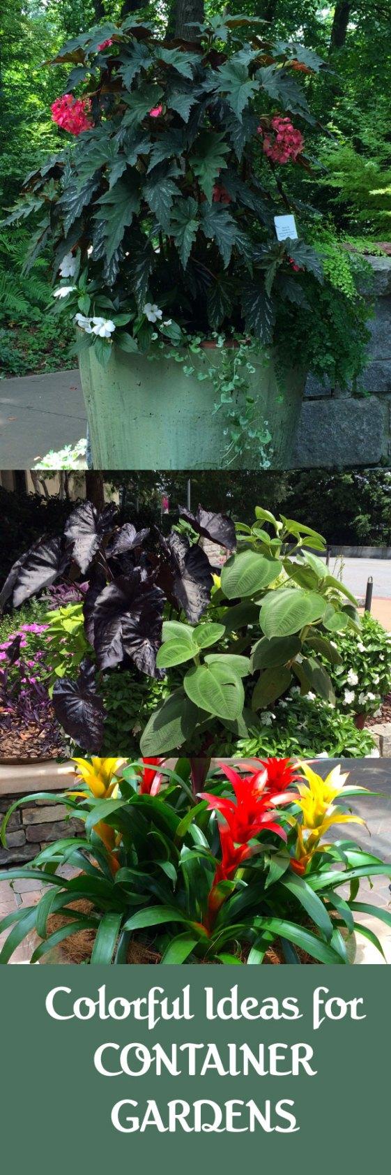 containter-gardens