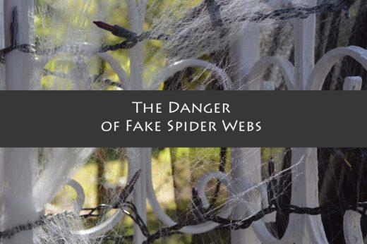 fake-spider-webs