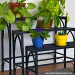 The Search for a Quality Plant Stand