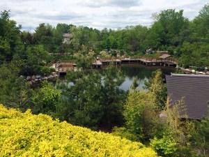 Japanese Garden at Frederik Meijer Gardens
