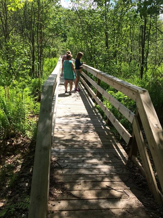 Loda Lake Boardwalk