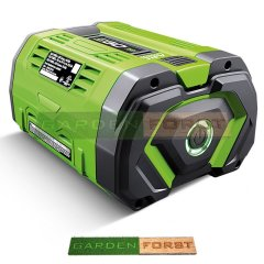 BATTERIA EGO POWER PLUS 10Ah