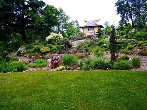 Aspen Grove Gardens - a low maintenance garden