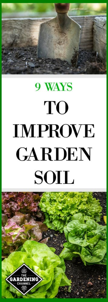 raised bed with garden spade lettuce with garden soil with text overlay 9 ways to improve garden soil