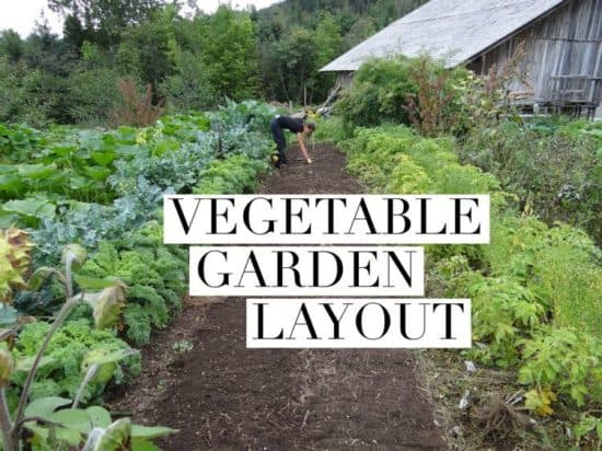 Perfect How To Lay Out A Vegetable Garden Nice Look