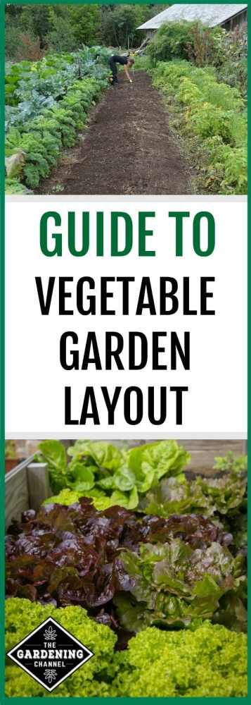 guide to planting and desinging vegetable garden