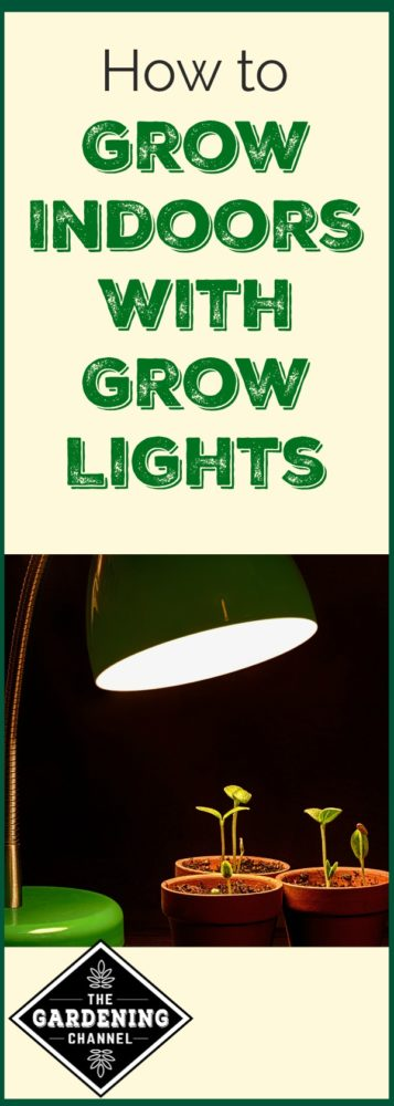 How to use grow lights