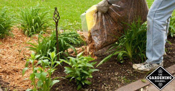 Charmant Using Mulch In Your Garden