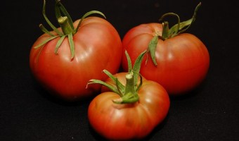 Five Beefsteak Tomatoes You'll Want to Grow