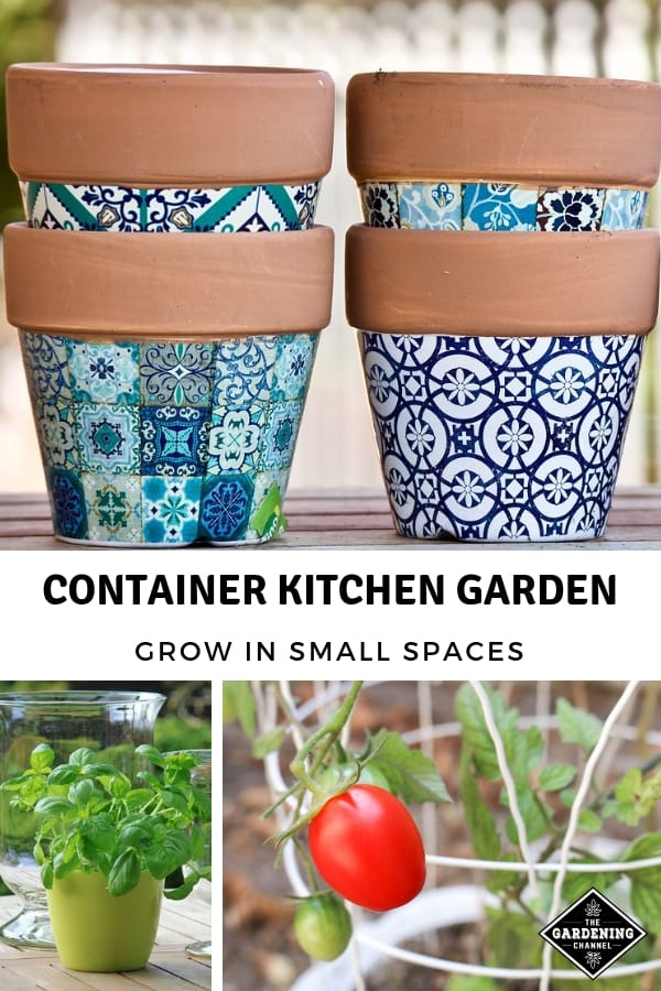 garden planter tomato in container herbs with text overlay container kitchen garden