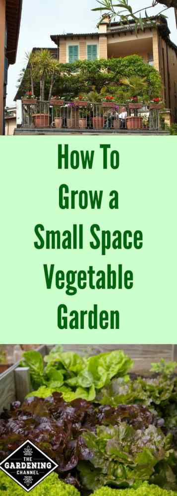 How to Grow a small space vegetable garden. You can grow organic produce even if you have a small yard or patio.