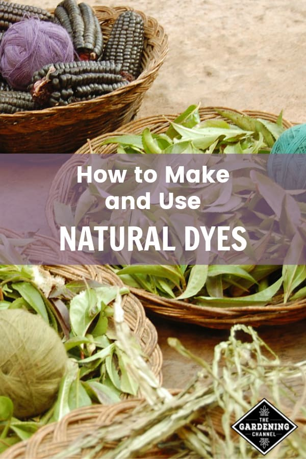 natural dyes for wool with text overlay how to make and use natural dyes