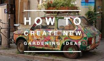 How to Create New Gardening Ideas