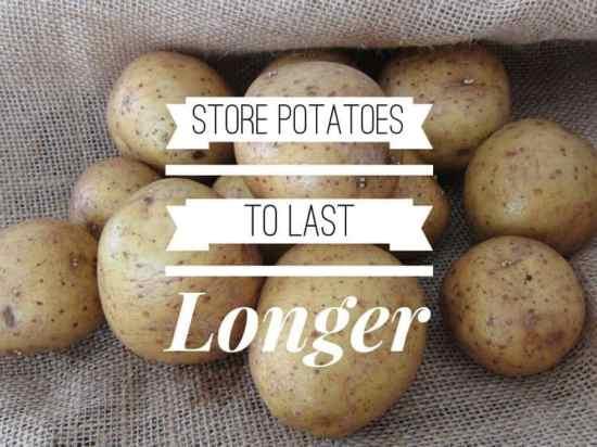 Storing Potatoes to Last Longer