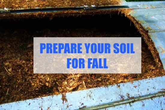 Prepare your soil for fall